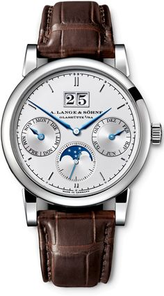"A. Lange  Sohne Saxonia Annual Calendar.  Excellent by all standards of excellence.  Amazing what ""millions of years"" and random chance can produce on its own, eh?  ha!"