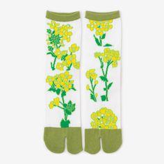 Tabi Socks   Canola Flowers Canola Flower, Tabi Socks, Calves, Flowers, Baby Cows, Tone Calves, Floral, Royal Icing Flowers, Florals