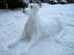 Snow Dog! Friend for you snow man? #swtrampolines