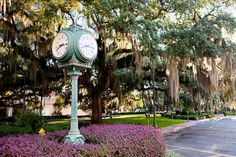 """Tallahassee, Florida, one of 10Best's """"Romantic Southern Cities in Spring"""""""