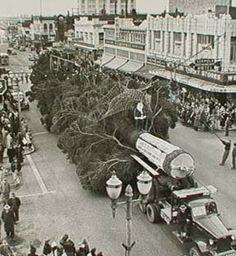 Tree coming down Holly at Cornwall, 1949 Old Highway 99