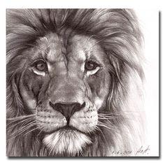Big Cat Lion Prtrait Drawing Face Print 7''x7''. $21.00, via Etsy.