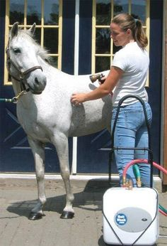 Americas Acres Hott Wash 4 Gallon by America's Acres. $389.95. It is lightweight, compact, quick and easy for one person to use.. Lets you have hot water for all of your equine needs any time, any place!. America's Acres Hott Wash(R) Now you can have hot water wherever and whenever you need it with the Hott Wash(R) Titanium Pro from America's Acres. . Plugs into any standard outlet, portable generator, or 12V truck inverter for use at the barn, horse shows, trail riding ...