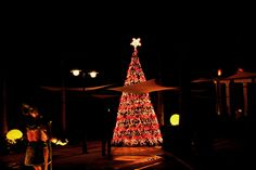 Christmas tree at Excellence Riviera Cancun. Happy Holidays! :D