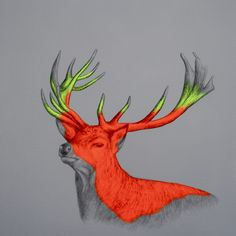 Wild Glory', acrylic, spray paint and pencil on canvas, 60x60x4cm (2013) by Louise McNaught