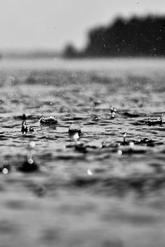 #rain 8. No todas las obras de arte son producto de un algún grado de habilidad