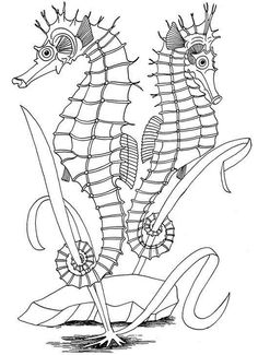 Seahorse Coloring Pages: Here are our collection of 10 amazing seahorse coloring pages printable for your kids. Start with simple ones and move towards pages suitable for older children