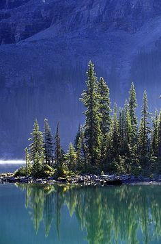 Sargent's Point, Lake O'Hara, Yoho National Park, British Columbia, Canada; photo by .John Sylvester