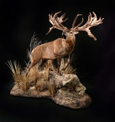 Create the Perfect Bar in Your Own Home Today - Man Cave Home Bar Deer Hunting Decor, Deer Decor, Geek Man Cave, Classy Man Cave, Taxidermy Display, Deer Mounts, Antler Art, Wildlife Decor, Trophy Rooms