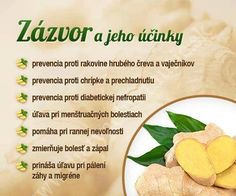 Infografiky Archives - Page 11 of 14 - Ako schudnúť pomocou diéty na chudnutie Raw Food Recipes, Healthy Recipes, Dieta Detox, Health Eating, Wellness, Natural Health, Health Tips, Herbalism, Healthy Lifestyle