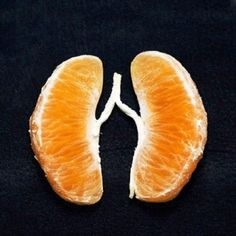Teaching anatomy with food...here's the lungs!!