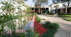 Jardins - Casa e Decoração - UOL Mulher