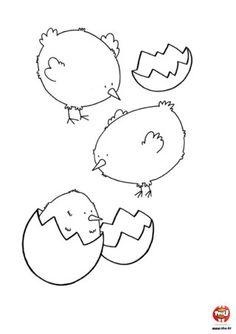 Trois petits poussins - Coloriages Poussin - TFOU
