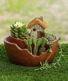 This Cottage Miniature Fairy Garden Planter is perfect! #zulilyfinds