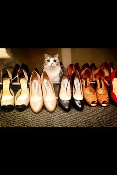 Meredith with Taylor's shoes