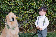 sneaky pup, photo by Shane and Lauren Photography http://ruffledblog.com/romantic-wedding-meets-winery-chic #weddings #petsatweddings #dog