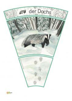 KiGaPortal - for pre-K, kindergarten and elementary school Animal Footprints, Fox Squirrel, Snow Forest, Woodland Party, Forest Animals, Winter, Naturaleza, Arctic Hare, Dinosaur Nursery