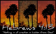"""PalmTree collage 