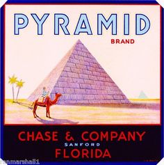 Crate label for Pyramid Brand Oranges, Chase & Company, Sanford, Florida.