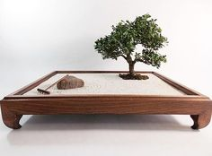 Best Ideas Garden Zen Miniature Bonsai Trees The Effective Pictures We Offer You About Zen Garden rocks A quality picture can tell you many things. Miniature Zen Garden, Mini Zen Garden, Garden Club, Miniature Trees, Indoor Zen Garden, Japenese Garden, Zen Rock Garden, Miniature Gardens, Amazing Gardens