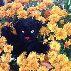 Vintage Steiff Hand Puppet Steiff Black Cat by BabettesFeats
