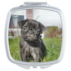 Black Pug Puppy Compact Makeup Mirror