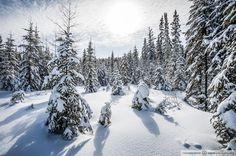 L'hiver - Photo: Hugo Lacroix