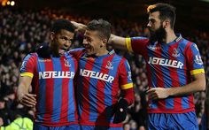 Crystal Palace 1 Newcastle United 1: Fabricio Coloccini hit by coin as Alan Pardew earns point against former side