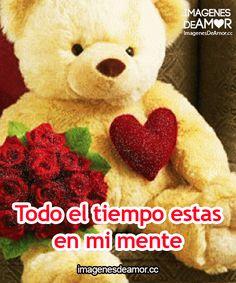Imagenes gif de ositos corazon y rosas rojas para whatsapp