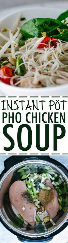 Pho Vietnamese Chicken Soup Instant Pot Recipe