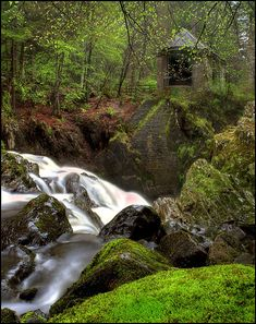 Ossian's Hall - The Hermitage, Dunkeld, Scotland been here!!! Perfect woodland wedding location and an easy walk for all abilities.