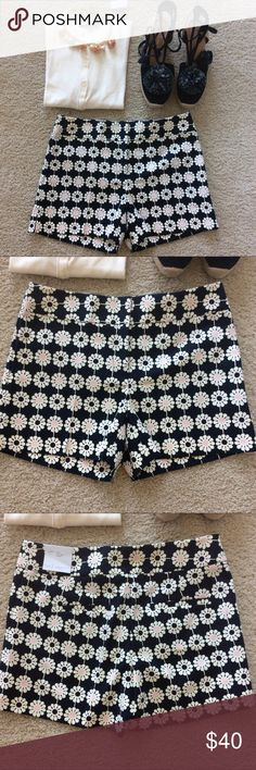 "LOFT Daisy Riviera Short LOFT Daisy Riviera Short. Love these💕 Navy with creamy white and pink. Flat front. Front zip and hook closure. Laying flat waist approx 15.5"" across. 4"" inseam. 78 cotton 20 rayon 2 spandex. Size 2. NWT. #1130 LOFT Shorts"