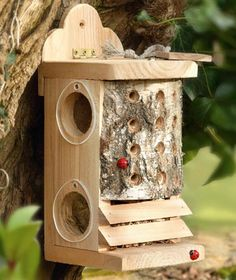 Things for the garden - Ladybird & Lacewing Beneficial Bug Box from http://www.wildforms.co.uk/ladybird-and-lacewing-box.html #homesfornature.