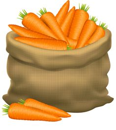 Illustration of Illustration of a sack of carrots on a white background. Vector icon vector art, clipart and stock vectors. Fitness Nutrition, Health And Nutrition, Fruit Bio, Image Fruit, Vegetable Illustration, Vegetable Basket, Farm Fun, Autumn Activities, Food Illustrations