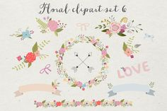 Floral clipart set 6 by The little cloud on Creative Market