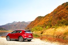 Mountains are splashed with colorful trees - 두 눈에 담고 싶은 알록달록 가을 산👀 - #colorful #keepwatching #lovelyday #autumn #fall #mountain #riverside #traveling #driving #carsofinstagram #car #SUV #SPORTAGE #KIA