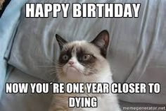 Image result for Happy Birthday to your cat