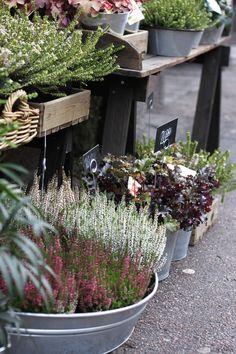 KUKKALA: #Floranna #flowershop