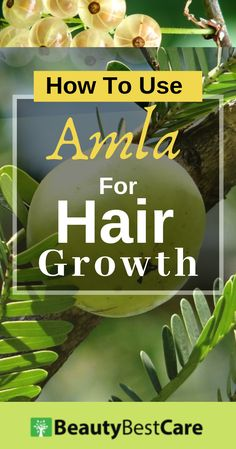 Shared tips how to use amla powder, amla oil for hair growth. Check how to make amla juice for hair growth & benefits of amla for natural hair growth. Hair Growth Tips, Natural Hair Growth, Natural Hair Styles, Amla Powder Hair, Benefit, Amla Oil, Amla Hair Oil, Hair Fall Control, Health Tips