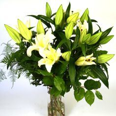 Looking for glorious yet affordable flowers for your loved ones? We, Real Flowers, bring for you exquisite Stargazer Long Stem Oriental Lilies at very affordable prices. To buy them, visit our website today! Oriental Lily, Stargazer, Real Flowers, Flower Delivery, Lilies, Dubai, Special Occasion, Website, Plants