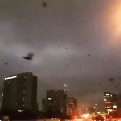 How was traffic today Beautiful Nature Scenes, Most Beautiful Animals, Amazing Nature, Beautiful Places, Nature Gif, Science And Nature, Nature Videos, Wow Video, Wild Weather