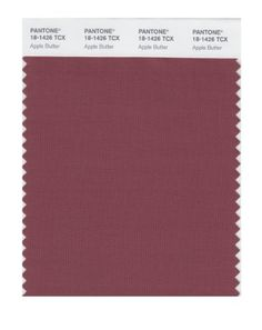 PANTONE SMART 181426X Color Swatch Card Apple Butter ** See this great product.