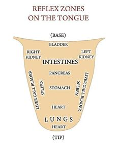 #Reflexology What is your tongue trying to tell you? http://www.iReflexology.com