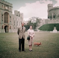 Queen Elizabeth II, Prince Philip, and one of their corgis at Windsor Castle - 1959 Princess Elizabeth, Princess Eugenie, Queen Elizabeth Ii, Isabel Tudor, Isabel Ii, Inside Windsor Castle, Royal Family News, Royal Families, Reine Victoria