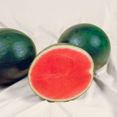 Watermelon Sweet Gem F1 – Harris Seeds All Vegetables, Best Fruits, Delicious Fruit, Flower Seeds, F1, Watermelon, Gems, Gardening, Sweet