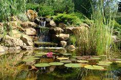 21 Garden Design Ideas, Small Ponds Turning Your Backyard Landscaping into Tranquil Retreats 21 Gard