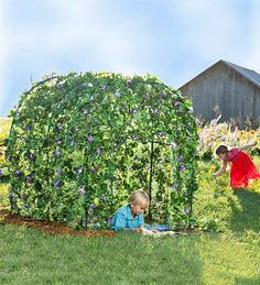 GARDEN FORT - Grow a lush, leafy fairytale dwelling right in your own backyard. Set up the framework, plant seeds around the base and watch as nature grows a living roof and walls up, over, and around it.