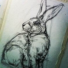 Colorful Animal Illustrations by Abby Diamond Animal Drawings, Art Drawings, Tattoo Drawings, Rabbit Drawing, Drawing Studies, Bunny Art, Colorful Animals, Diamond Art, Watercolor And Ink