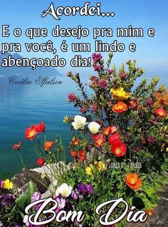 Portuguese Quotes, Jesus Prayer, Good Afternoon, Good Morning Images, Lily, Veronica, Charlie Brown, Diabetes, Night
