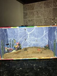 The other week, Emily had to make an ocean biome in a shoebox for her science class. She put a lot of thought into how she wanted her biome to look and I. Water Cycle Project, Ocean Projects, 5th Grade Science, Biomes, Shoe Box, Kid Stuff, Rain, Kids, Rain Fall